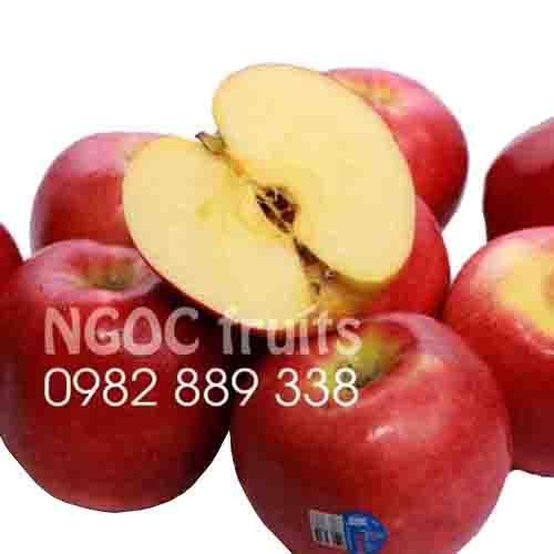 American Rose Apple