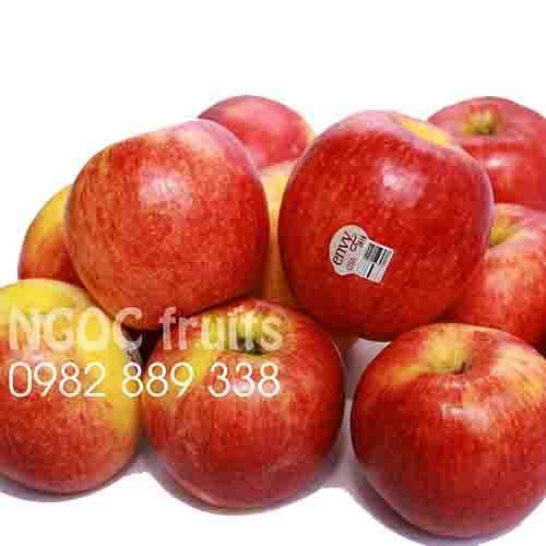 American Envy Apple
