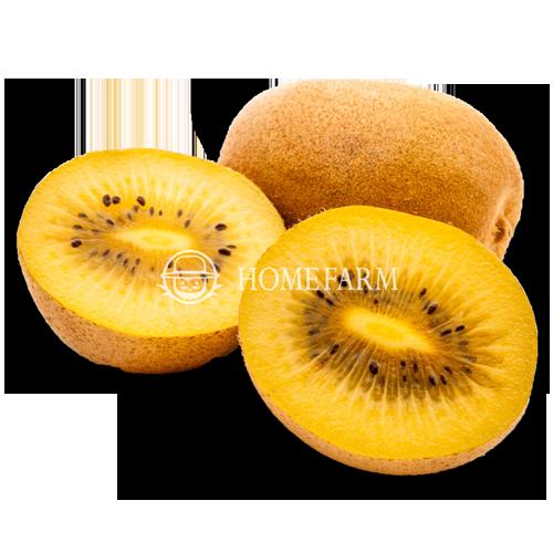 NewZeaLand Yellow Kiwi