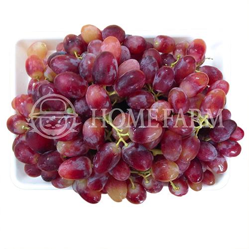 Australian Long Crimson Red Grapes