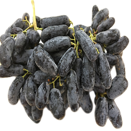 Australian Finger Grapes