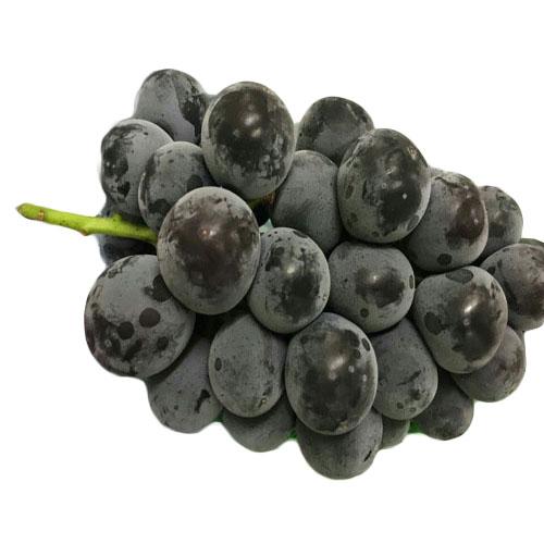 Korean Kyoho Grapes