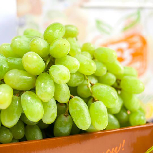 American Green Seedless Grapes