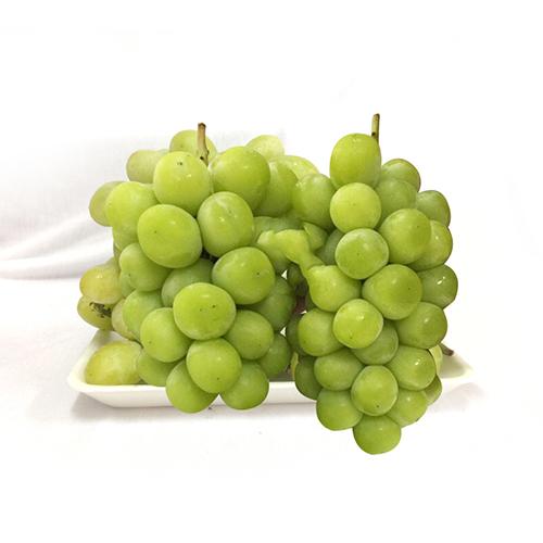 Korean Shine Muscat Grapes