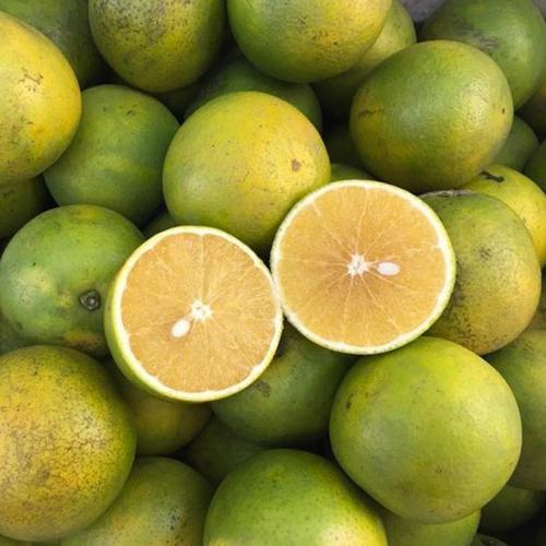 Lai Vung Xoan Orange
