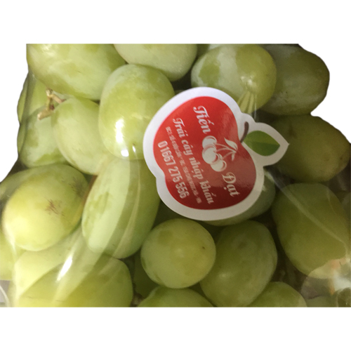 American Green Grapes