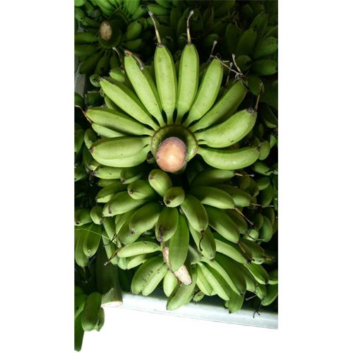 Areca Banana