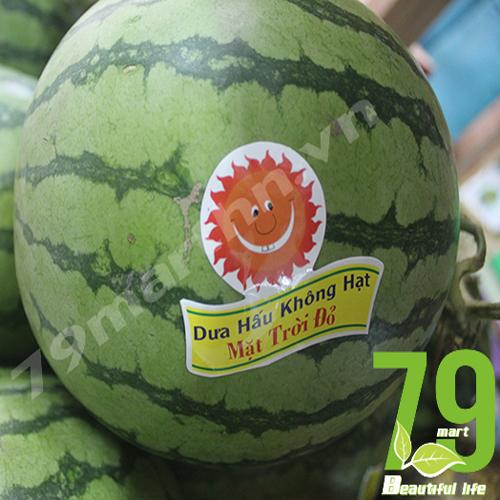 Seedless Water melon - Red Sun