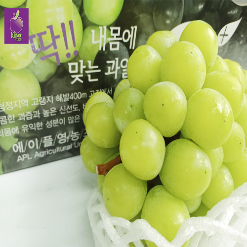 shine muscat葡萄