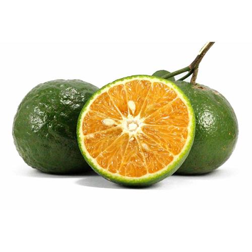 Sanh Orange