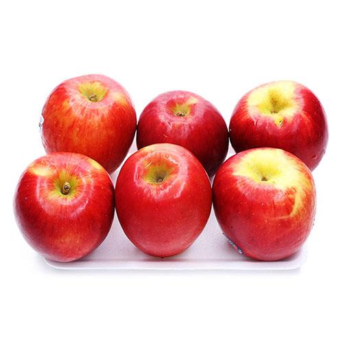 New Zealand Jazz Apple