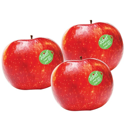 France Juliet Organic Apple