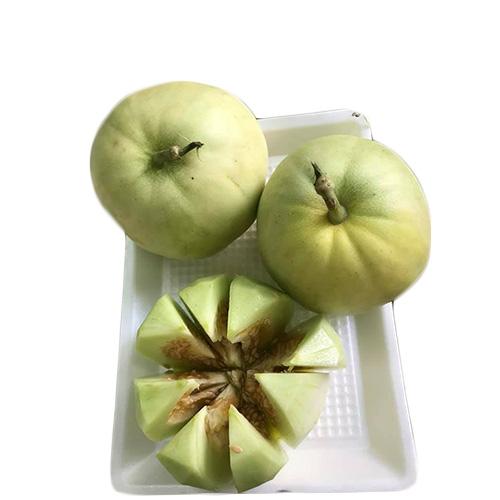 顺越越南农场甜瓜