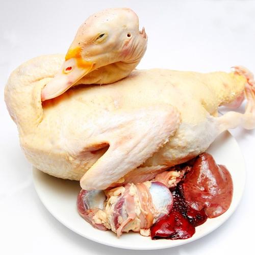 Thịt ngan