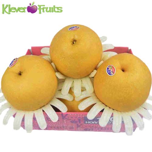 Korean Pear